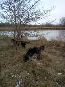 Carlie & Rayna at river